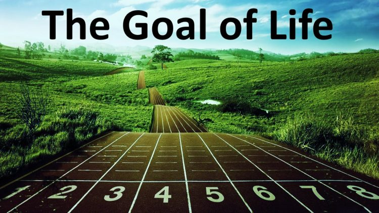 tujuan hidup manusia